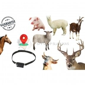 GPS TRACKER MTK FOR ANIMALS